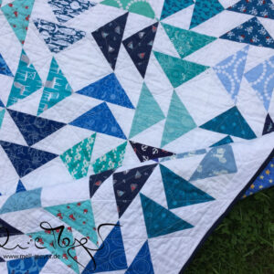 Noah's Quilt – Which Way to the Stars?